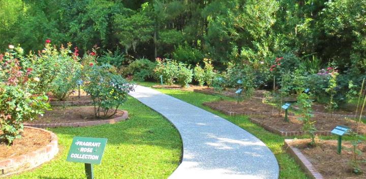 Charmant Savannah Botanical Gardens