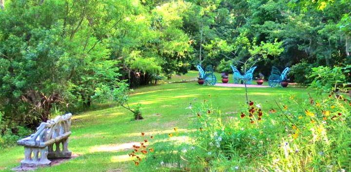 Sms Spotlight Savannah Botanical Gardens Georgia