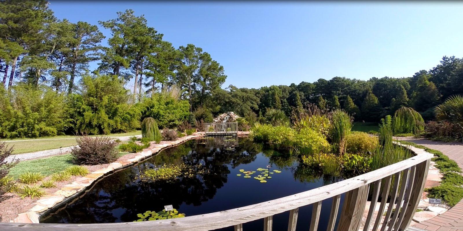 SMS Spotlight: Coastal Georgia Botanical Gardens